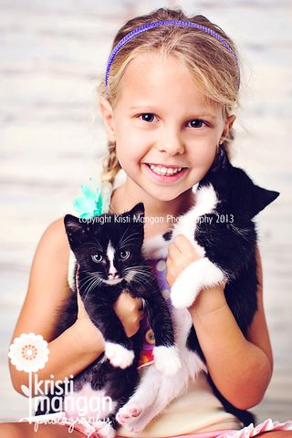 Kristi mangan photography_palm beach pets_kittens