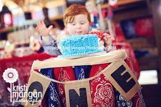 Cakesmash_jupiterchildphotographer_kristimanganphotography_blog